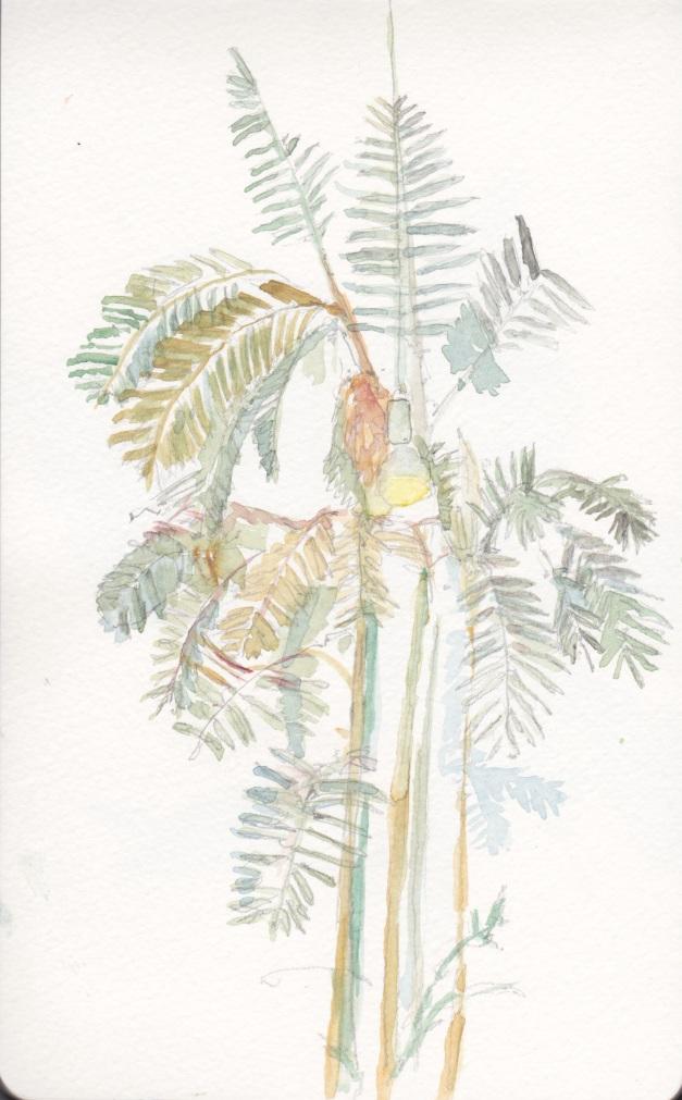 palme 4