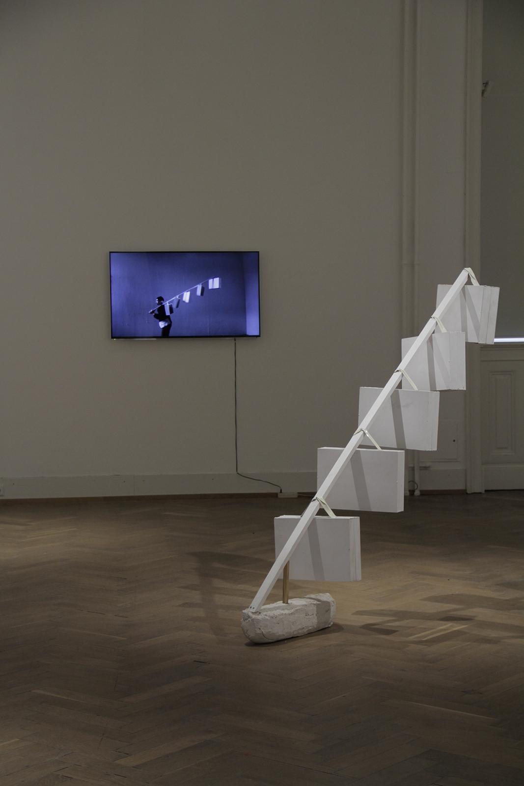 Niesel-Reghenzani_video